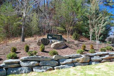 Oconee County, Pickens County Residential Lots & Land For Sale: 137 Eastatoe Parkway