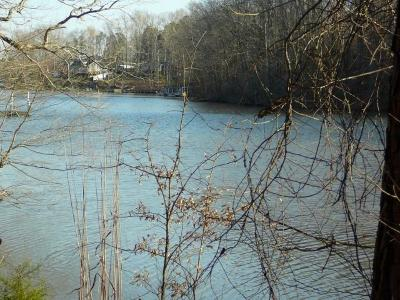 Anderson Residential Lots & Land For Sale: 9 Southview Drive