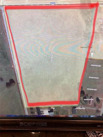 Anderson County Residential Lots & Land For Sale: 898 W Greer Street