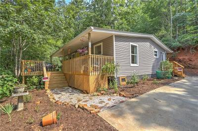 Oconee County Single Family Home For Sale: 376 Bright Eyes Drive