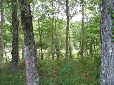 Anderson County, Oconee County, Pickens County Residential Lots & Land For Sale: Lot 036 Overlook Drive