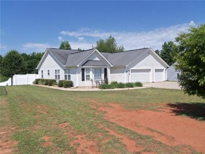Anderson Single Family Home For Sale: 1009 Blumefield Road
