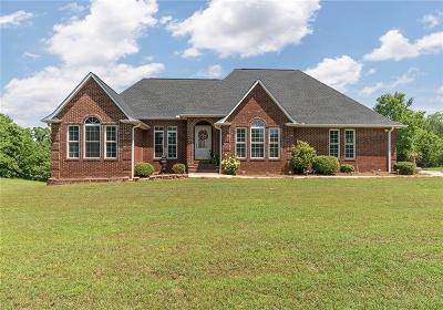 Pickens County Single Family Home For Sale: 783 Five Forks Road