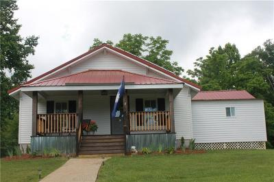 Pickens County Single Family Home For Sale: 247 Dan Ross Road