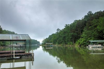 Anderson County, Oconee County, Pickens County Single Family Home For Sale: 505 N Point Road