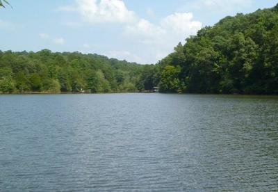 Oconee County, Pickens County, Anderson County Residential Lots & Land For Sale: 264 Ramey Road