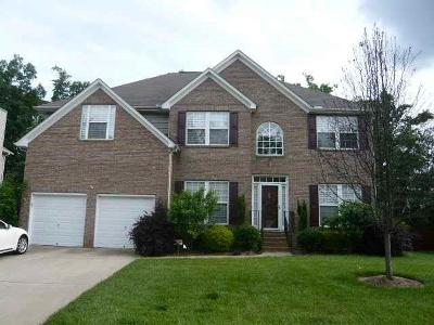 Simpsonville Single Family Home For Sale: 8 Redglobe Court