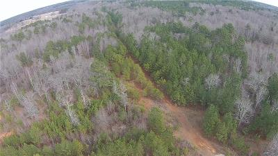 Anderson County Residential Lots & Land For Sale: N Major Road
