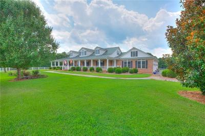 Abbeville County Single Family Home For Sale: 869 Gin House Road