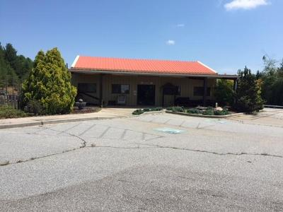 Seneca Commercial For Sale: 2060 Sandifer Boulevard