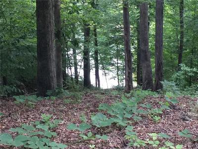 West Union, Seneca/west Union Residential Lots & Land For Sale: 228 Long Bay Drive