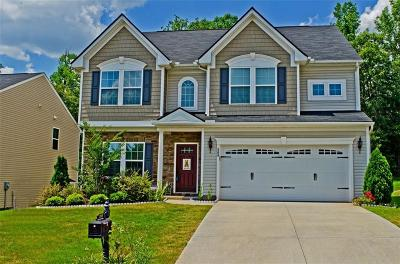 Simpsonville Single Family Home For Sale: 260 Chestatee Court
