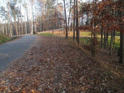 Residential Lots & Land For Sale: Lot 55 Peninsula Pointe Drive