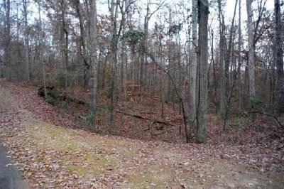 Anderson, Belton, Pendleton, Williamston Residential Lots & Land For Sale: 00 Pintail Road