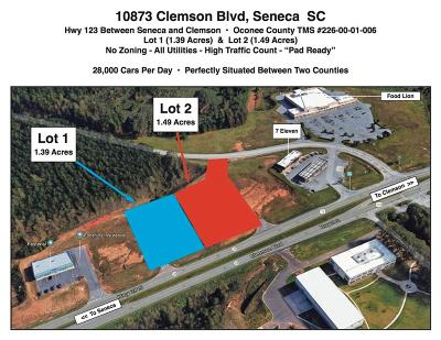 Seneca Commercial For Sale: 10873 Clemson Boulevard