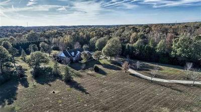 Greenville County Single Family Home For Sale: 260 Snow Road