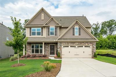 Easley Single Family Home For Sale: 107 Caledonia Drive