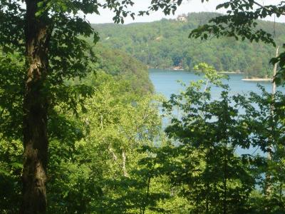 Cliffs At Keowee Falls North, Cliffs At Keowee Falls South Residential Lots & Land For Sale: 309 Buttonwood Court
