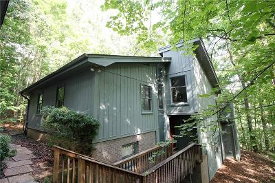 Single Family Home For Sale: 206 Chippewa Drive