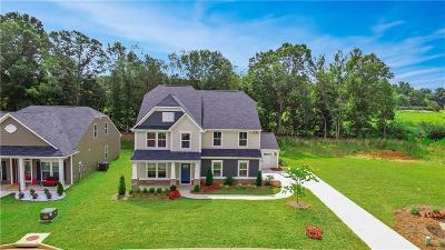Fountain Inn Single Family Home For Sale: 12 Village Vista Drive