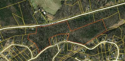 Easley Residential Lots & Land For Sale: 00 Greenville Highway