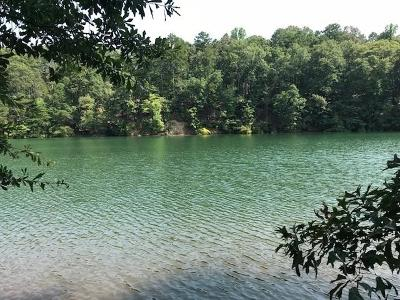 Salem Residential Lots & Land For Sale: 570 Riverstone Drive