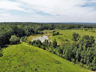 Townville Residential Lots & Land For Sale: 171 Conneross Road