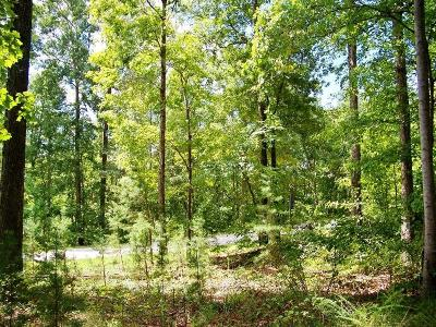 Residential Lots & Land For Sale: 513 Scharlin Drive
