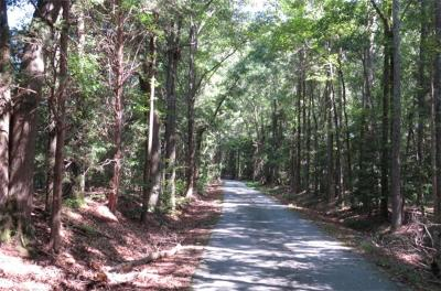 Simpsonville Residential Lots & Land For Sale: 00 Tate Chapman Road