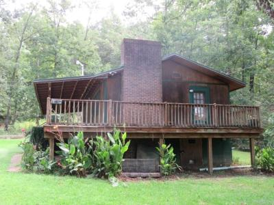 Pickens Single Family Home For Sale: 336 Right Fork Road