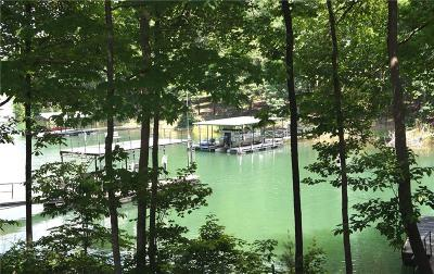Anderson County, Oconee County, Pickens County Single Family Home For Sale: 103 Harbour Point Drive