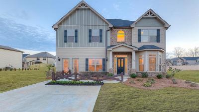 Single Family Home For Sale: 200 E Deer Drive