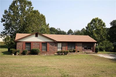 Greenville County Single Family Home For Sale: 101 Palamon Street