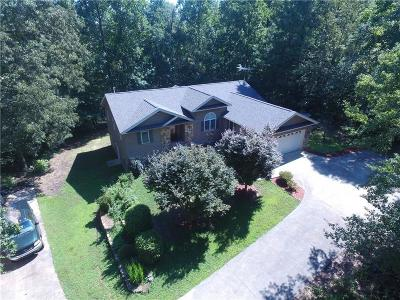 Anderson County, Oconee County, Pickens County Single Family Home For Sale: 370 Loftis Lane