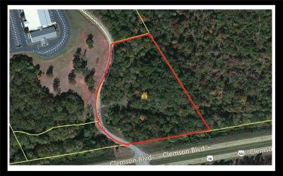 Seneca Commercial For Sale: 00 Hwy 123 & Watson Drive