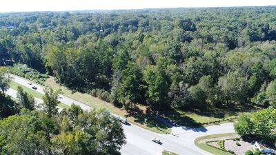 Anderson Commercial For Sale: 4299 Clemson Boulevard