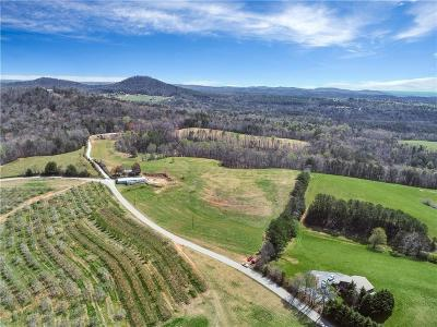 Mountain Rest Residential Lots & Land Contract-Take Back-Ups: 00 Laurel Springs Road