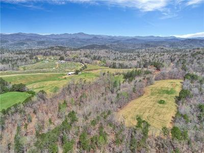 Mountain Rest Residential Lots & Land For Sale: 00 Laurel Springs Road