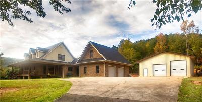 Pickens County Single Family Home For Sale: 298 Holly Springs School Road