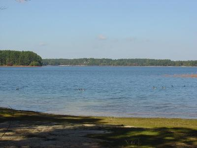 Hart County, Franklin County, Stephens County Residential Lots & Land For Sale: 19 Bluebird Lane