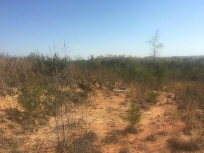 Westminister, Westminster, Westminter Residential Lots & Land For Sale: Toccoa Highway