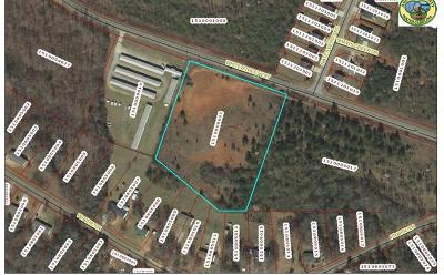 Anderson Residential Lots & Land For Sale: 00 White Street Extension Street