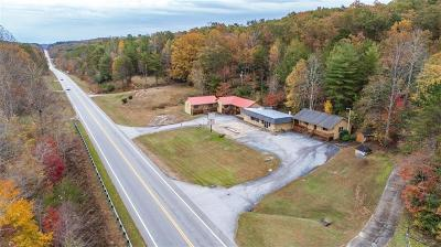 Pickens Multi Family Home For Sale: 4515 Sc Highway 11
