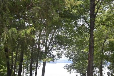 Residential Lots & Land For Sale: Tract 1 Reed Creek Point