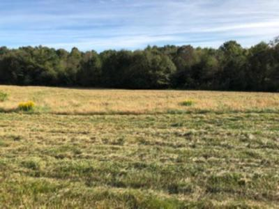 Oconee County, Pickens County Residential Lots & Land For Sale: 117 Windy Hill Lane