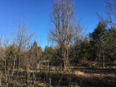 Residential Lots & Land For Sale: Charlies Creek Road