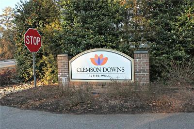 Clemson Townhouse For Sale: 304 Downs Boulevard
