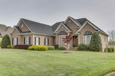 Single Family Home For Sale: 132 Tully Drive