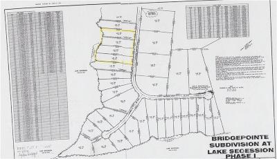 Residential Lots & Land For Sale: 114 Waterside Drive