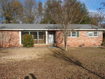 Easley Single Family Home For Sale: 117 Northway Drive